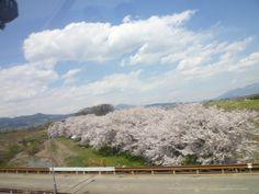 """Nagano-Dentetu""(Treno), Yutnaka-Onsen(Terme)→Nagano, Nagano Japan"