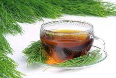 Os benefícios do chá de cavalinha são variados, indo do tratamento de hemorróidas, à queda de cabelo. Esta erva é usada com grandes resultados para a cura de quase todos os tipos de hemorragia que ocorrem no corpo humano. Também trata a tuberculose e problemas