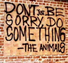 DAMNIT!!! Don't Just Be Sorry… DO SOMETHING!! The Animals