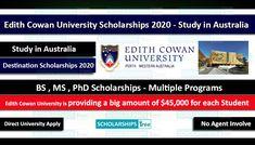Undergraduate Scholarships, Student Scholarships, Bachelor Of Education, International Scholarships, Strategic Goals, Teaching Secondary, Environmental Health, Communication Skills