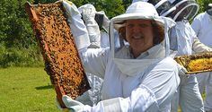 #BeeWell Honey is the premier supplier of #honeybee packages in the upstate Carolinas! http://beewellhoneyfarm.com/