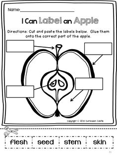 I can label an apple! Cut and paste activity.