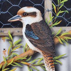 Shop art by Lyn Cooke - 13 artworks for sale on Bluethumb. Australian Animals, Australian Artists, Butterfly Pictures, Buy Art Online, Cute Birds, Colorful Birds, Wild Birds, Bird Art, Paintings For Sale