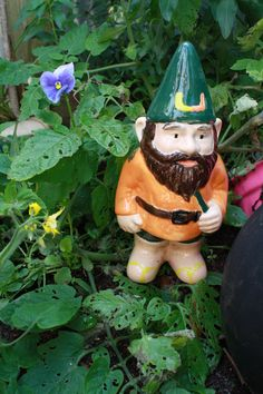 It's all about the U! - 2012 Hand-painted Garden Gnome