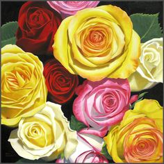 Mixed Roses, sold, prints available