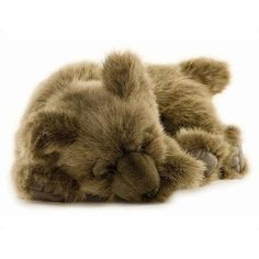 Sleeping cuddly bear.