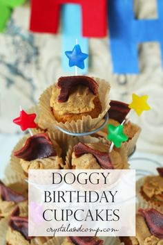 dog friendly cupcakes for celebrating your pups birthday!