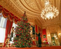 The royal family have officially kicked off the festive season, with staff erecting trees at Windsor Castle today. Royal Collection Trust members of staff put the finishing touches to a tree in the Crimson Drawing Room at Windsor Castle Royal Christmas, First Christmas, Victorian Christmas, Nordmann Fir Tree, Inside Windsor Castle, Castle Drawing, Drawing Room, Christmas Decorations For The Home, Christmas Trees