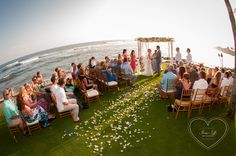 Aerial view of a Kauai Wedding on the Beach House Lawn. Please check out www.imagesbyliz.com for more details. Kauai Wedding, Our Wedding, Beach House Kauai, Aerial View, Special Day, Lawn, Dolores Park, Wedding Photography, Weddings