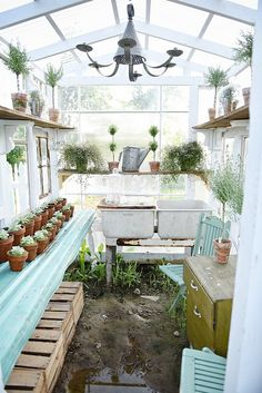 Color inspiration - living room DIY rustic window greenhouse - Take the full tour of this hand built greenhouse made out of antique windows inside & out! Backyard Greenhouse, Small Greenhouse, Greenhouse Plans, Old Window Greenhouse, Greenhouse Shelves, Portable Greenhouse, Greenhouse Wedding, Shabby Chic Greenhouse, Greenhouse Tables