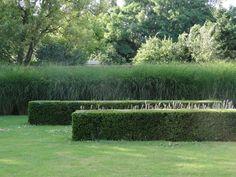 Thomas Leplat. Beautifully manicured landscaping. Green garden.