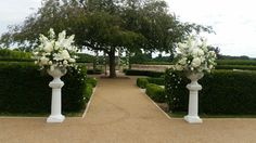 White urn and pedestal arrangements with white lilies at Froyle Park