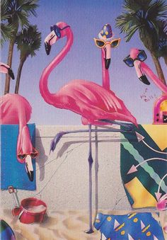Random Cards: Pink Flamingos with Cool Glasses