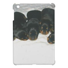 #Rottweiler Puppies iPad Mini Cases - #rottweiler #puppy #rottweilers #dog #dogs #pet #pets #cute