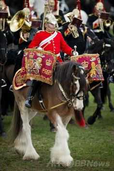 ロンドン公園に騎兵ずらり、恒例の閲兵式 国際ニュース:AFPBB News   ロンドン公園に騎兵ずらり、恒例の閲兵式 英ロンドン(London)のハイド・パーク(Hyde Park)で開催された、王室騎兵乗馬連隊(Household Cavalry Mounted Regiment)の閲兵式で演奏を披露する騎兵たち(2014年3月20日撮影)。(c)AFP/LEON NEAL