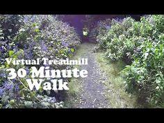Virtual Treadmill - 30 MINUTE WALK - Mount Kembla Ring Track, NSW Australia