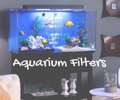How To Choose A Filter For An Aquarium https://shar.es/1IdV03   #RentAquarium, #RentanAquarium, #AquariumLondon, #LondonAquarium, #London