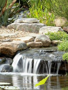 10 basic tips for building a water garden.  Include a waterfall. The movement benefits the garden. The waterfall pushes water from one side of the garden to the other, moving nutrients throughout the space. Also, mosquitoes prefer to lay their larvae in still water, so it controls bugs.