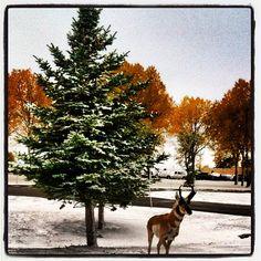 Casper, Wyoming at the airport :)