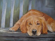"Contemporary Artists of North Carolina: Dog Portrait, Daily Painting, ""Ruby's Nap"". 16x20x1.5 Oil on Canvas, SOLD"
