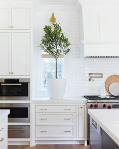 @puresalt posted to Instagram: When you have abundant counter space and soaring ceilings, you can totally elevate your green game with a citrus tree in the kitchen 💁 we love the way this tree plays with scale, and by flanking the range, it balances out all the crisp white and sleek finishes with a lush pop// 📷 : @jessicajalexander #mypuresalthome #puresalt #puresaltinteriors #ruemagazine #homewithrue #ruedaily #modernluxury #modernluxurydesign #modernluxdesign #luxema Kitchen Cabinet Colors, Kitchen Reno, Living Room Kitchen, Home Living Room, Kitchen Remodel, Kitchen Cabinets, Kitchen Ideas, Home Design, Interior Design