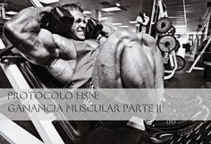 Protocolo HSN: Ganar músculo sin apenas grasa PARTE II | HSN Blog