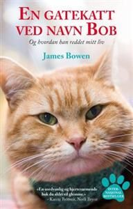 Booktopia has A Street Cat Named Bob by James Bowen. Buy a discounted Paperback of A Street Cat Named Bob online from Australia's leading online bookstore. Street Cat Bob, Bob Books, Read Books, Son Chat, Cat Names, We Are The World, Ginger Cats, Little Books, New Books