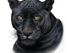 zwarte panter tekening - Google Search