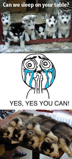 Yes yes you can!