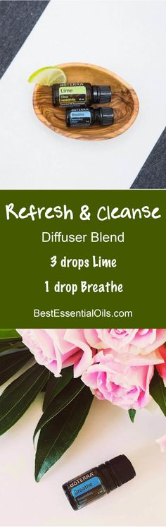 Refresh and Cleanse doTERRA Diffuser Blend
