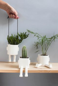 Pack of 3 planters. Free shipping! Special Christmas.