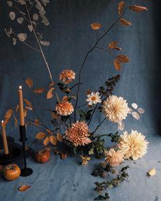 292 Likes, 12 Comments - white oak Winter Wedding Flowers, Fall Flowers, Cut Flowers, Ikebana Arrangements, Floral Arrangements, Zen, Flower Studio, Floral Centerpieces, Centrepieces