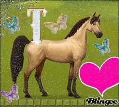 My Horse Tobanski