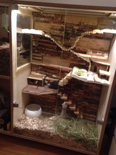 Large Wooden Pet Cage – I love the layout of this cage. Especially the bendy bri… Large Wooden Pet Cage – I love the layout of this cage. Especially the bendy bridge at the top. Chinchillas, Hamsters, Rodents, Large Hamster Cages, Gerbil Cages, Hamster Habitat, Hamster Care, Hamster Stuff, Pet Mice