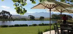 Vist Award-winning Wine Estates in Stellenbosch Wine Region just outside of Cape Town. Enjoy delicious wine & gourmet food, paired with spectacular surroundings. Travel Checklist, Foodie Travel, Cape Town, Gourmet Recipes, Farms, Lunch, Patio, Wine, Outdoor Decor