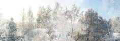 Päivi Hintsanen: Winter 2009-2011