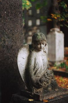☫ Angelic ☫ winged cemetery angels and zen statuary - Cemetery Angels, Cemetery Statues, Cemetery Headstones, Old Cemeteries, Cemetery Art, Graveyards, Angels Among Us, Angels And Demons, Statue Ange