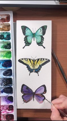 Watercolor Butterfly Time Lapse Video by Emily Olson This beautiful butterfly trio was such a joy to paint! I used Arches cold pressed paper, Arteza liner brushes, Daniel Smith watercolor Watercolor Painting Techniques, Watercolor Video, Watercolour Tutorials, Watercolour Painting, Painting & Drawing, Bee Painting, Painting Videos, Spray Painting, Watercolours