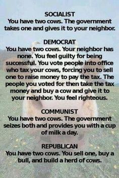 Politics in a nutshell. Vote republican