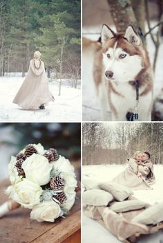 Winter Inspiration