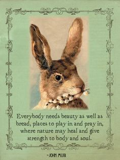"""""""Everybody needs beauty as well as bread, places to play in and pray in, where nature may heal and give strength to body and soul."""" John Muir"""