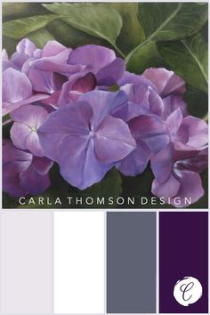 Color inspiration from this print of an original oil painting of single purple hydrangea flower. Colour Pallette, Color Palate, Colour Schemes, Color Combinations, Hydrangea Colors, Hydrangea Flower, Hydrangeas, Colours That Go Together, Pallet Painting