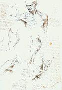 "New artwork for sale! - "" Leonardo Da Vinci - Anatomical Studies Of A Male Shoulder by Leonardo da Vinci "" - http://ift.tt/2lIYbtt"