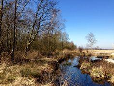 Weerribben, The Netherlands