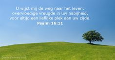 Psalmen 16:11 - dailyverses.net