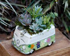 Succulent planterSucculent gardenHippy VanSucculent