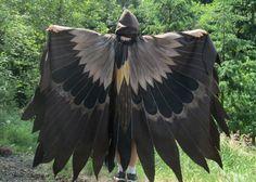 Raven Falcon Blackbird Owl Wings Custom Bird Cloak OOAK Painted