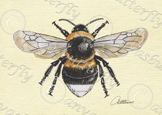 Bumble Bee Print Bumble Bee Painting Bumble Bee Artwork -Garden Bumble Bee a firm favourite with many.Download and make into any size print. by Canvasbutterfly on Etsy