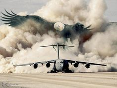 Support our Troops! C 17 Globemaster Iii, Navy Military, Military Life, Military Quotes, Military Families, Military Humor, Military Spouse, Military Veterans, Military Service