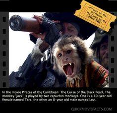 Pirates Of The Caribbean random fact